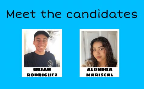 The candidate running for the position of ASB treasurer is Uriah Rodriguez and the candidate running for the position of class president is Alondra Mariscal. Uriah is a member of the National Honors Society, MESA, ASB, boys volleyball, and Interact club. Alondra is a member of MESA, leadership, and is currently attending a program offered by the California State University, Los Angeles.